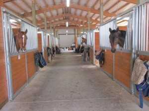 New stalls in a barn built by Spane Buildings in Puyallup WA